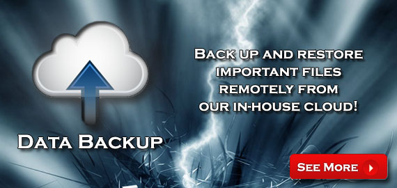 Data Backup - Backup and restore important files remotely from our in-house cloud!